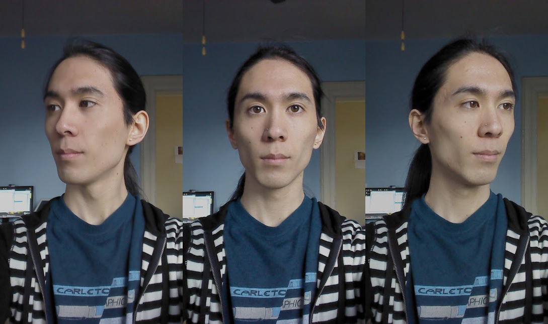 Marina's face from 3 different angles. Her features are fairly sharp and angular.